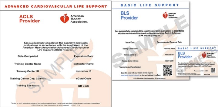 American First Responder CPR and BLS Classes in Los Angeles, CA