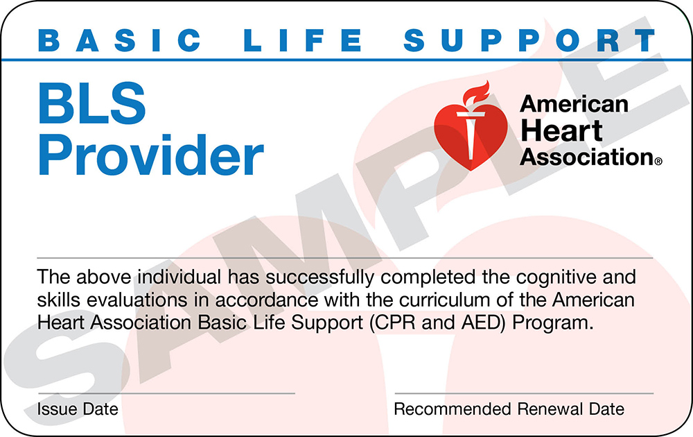 American Heart Ociation Bls Basic Life Support Cles In Jacksonville And Orange Park