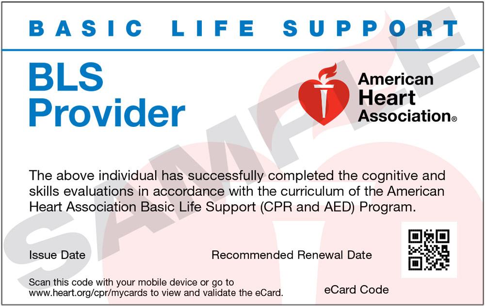 Phoenix BLS Classes, AHA CPR Classes and Online AHA Classes in ...